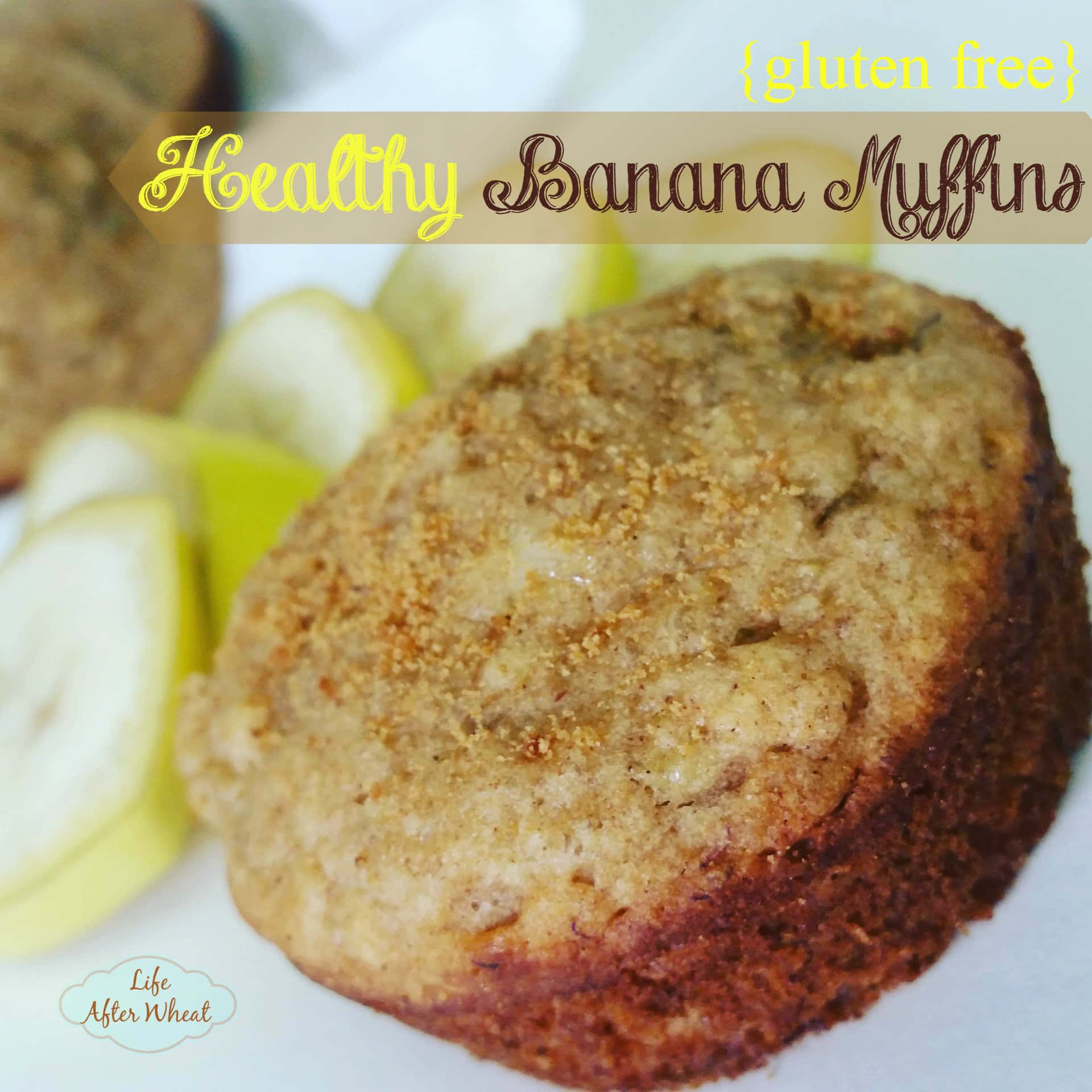 These Healthy (gluten free!) Banana Muffins are naturally sweetened with honey and bananas, and contain a secret ingredient that gives them a protein boost.